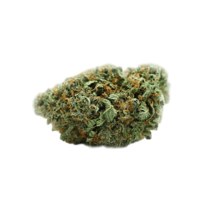Buy OG Kush-gelatostrainestate