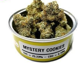 Mystery Cookies Weed Cans-gelatostrainestate